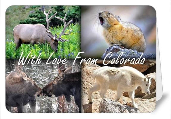 With Love From Colorado Greetings Card