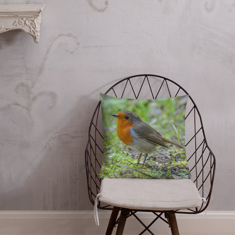 Little Robin Redbreast Came To Visit Me