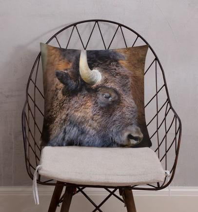 Adam the Moose Accent Pillow