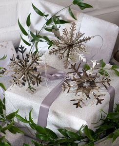 Silver Snowflake Decorations 3D