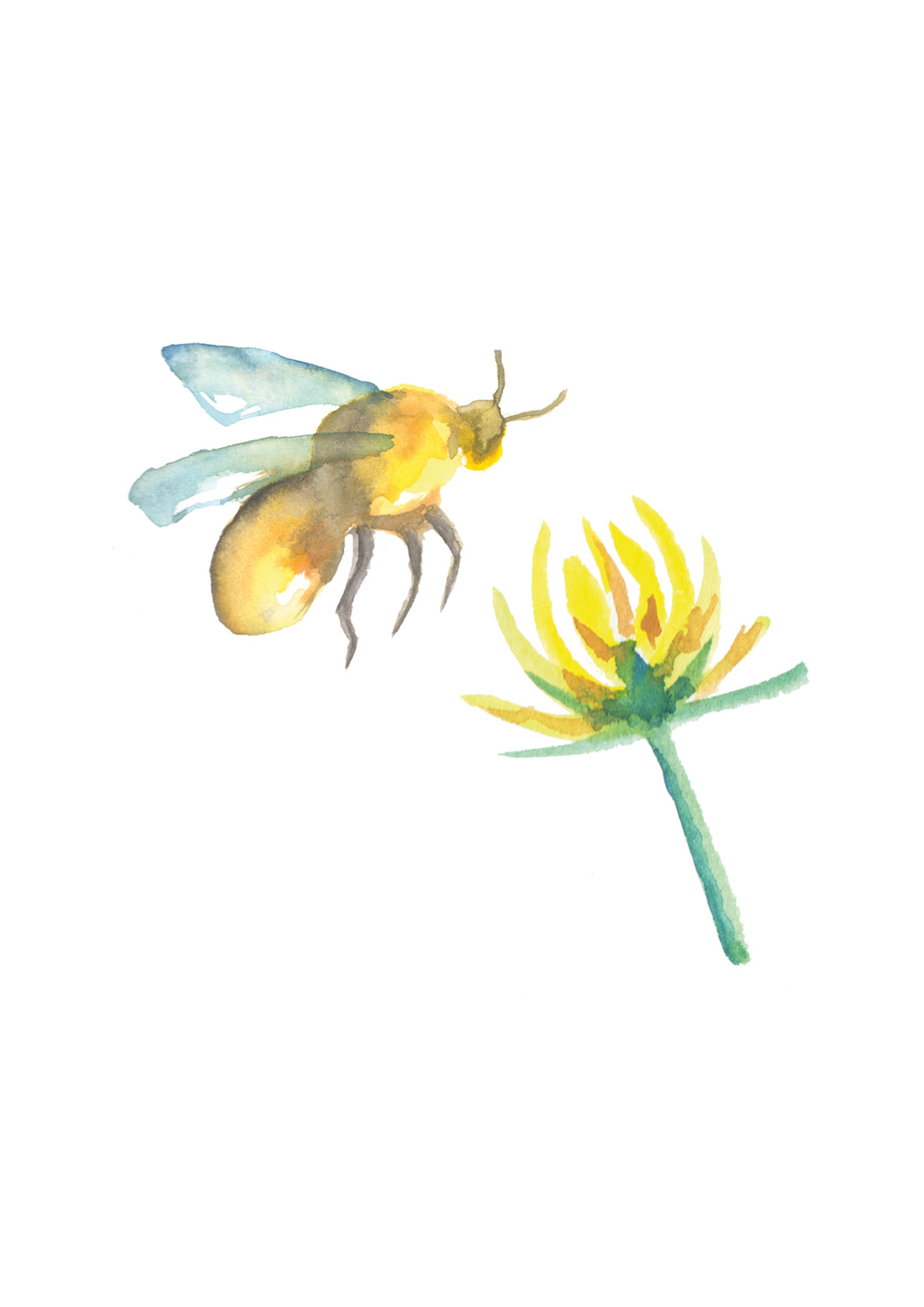 Bumblebee and Clover A4 Giclee Print