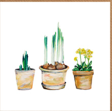 Spring Bulbs in Pots Blank Card