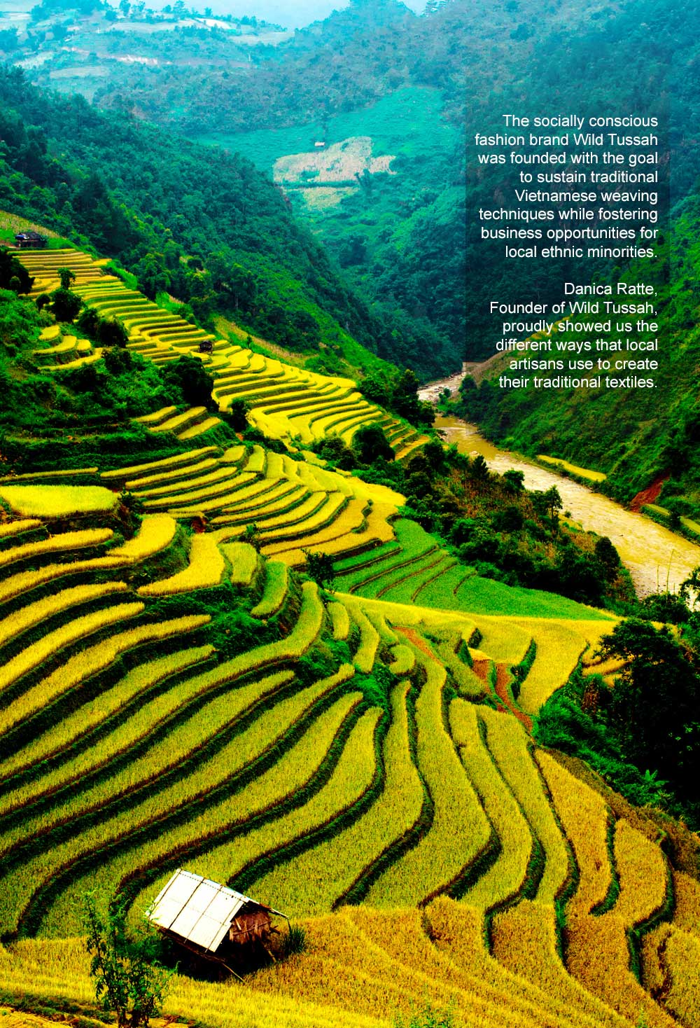 Sapa Mountain and Rice Fields in Vietnam