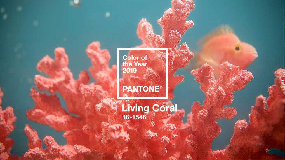 Pantone Color of 2019, Living Coral