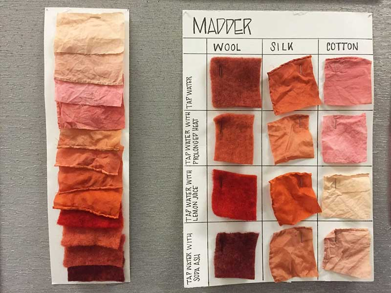 Natural Dye: Madder
