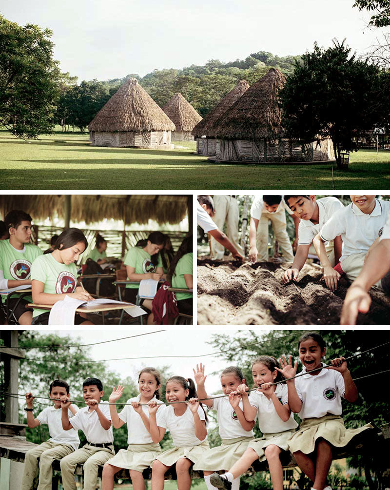 Hearts in Action, the Jungle School