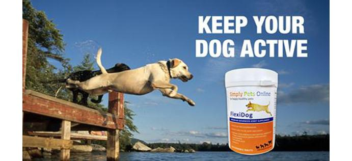 FlexiK9 Veterinary Strength Dog Joint Supplement