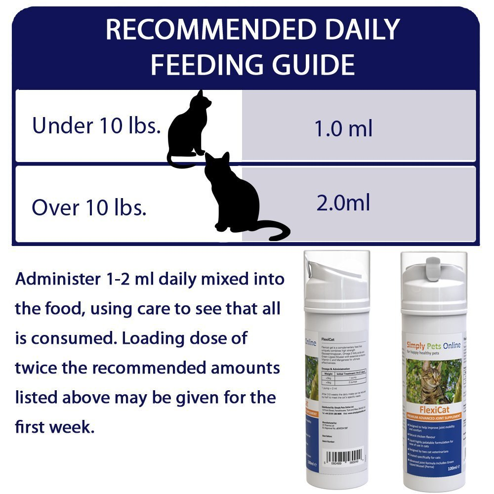 Cat Joint Supplement - Natural Antioxidants, Promotes Mobility in Cats Plus Catnip Toys