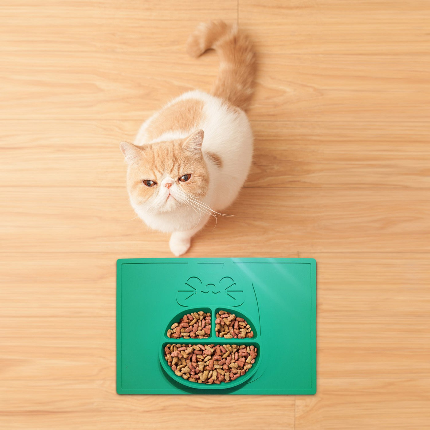 Silicone Cat Food Eating Mat and Water Bowl Dish - One Piece No Mess - Dishwasher Safe - Non-Slip - No BPA, BPS or PVC - 100% Food Grade - Durable