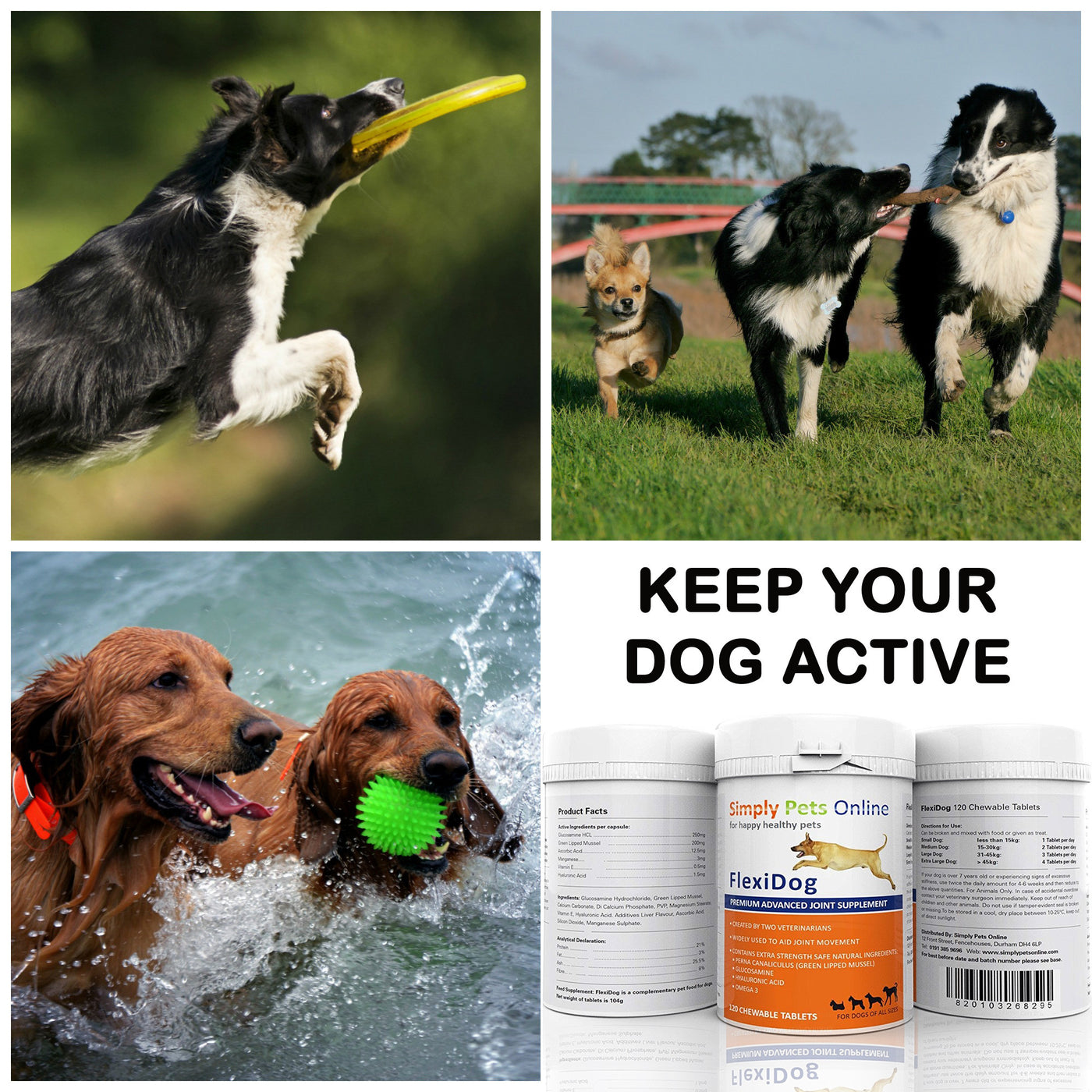 Flexidog (FlexiK9) Dog Joint Supplement Buy 4 SPECIAL OFFER | POST FREE
