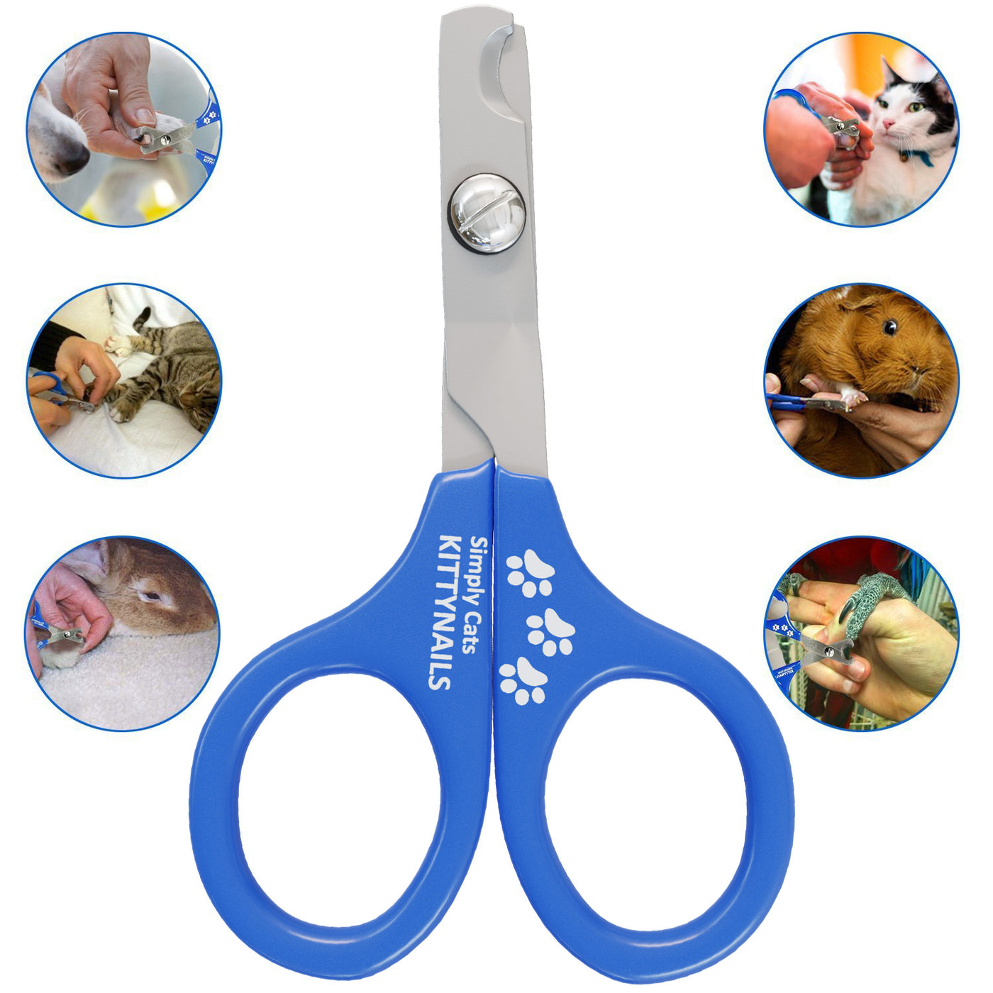 SPECIAL OFFER 42 % OFF | Professional Cat Nail Clippers | Kittynails