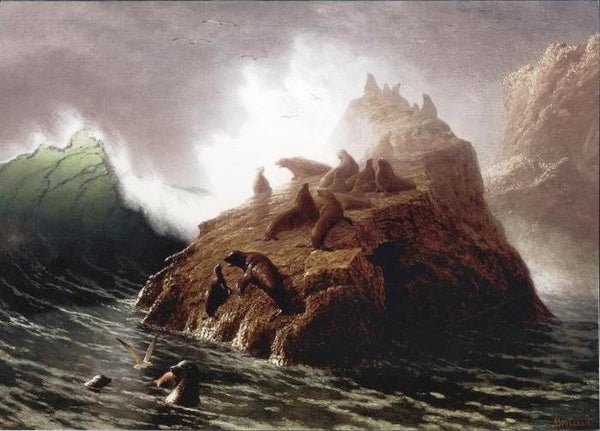 Seal Rock, Albert Bierstadt