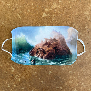 Collection Face Mask - Seal Rock