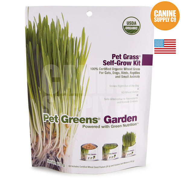 Pet Greens® Self-Grow Organic Wheatgrass Kit | Canine Supply Co.