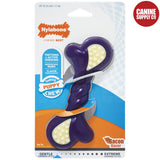 Nylabone Puppy Double-Action Chew Toy - Rubber Bone, Petite | www.caninesupplyco.com