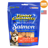 Yummy Chummies® Salmon with Sweet Potato Recipe | Canine Supply Co.