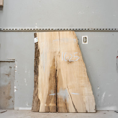 "51"" x 31"" Maple Slab"