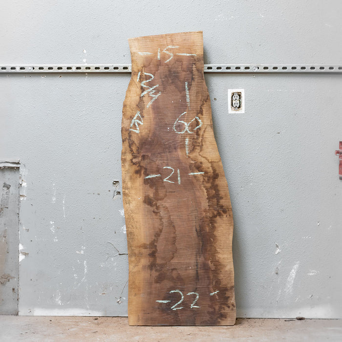 "60"" x 19"" Black Walnut Slab"