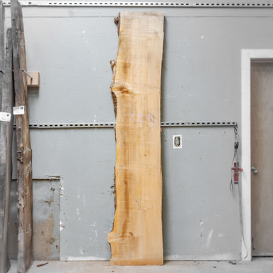 "98"" x 18"" Maple Slab"