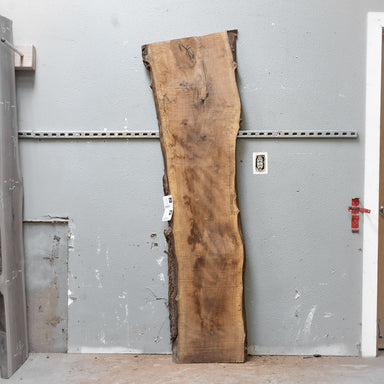 "75"" x 18"" Black Walnut Slab"