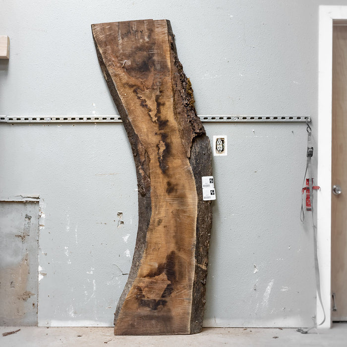"78"" x 20"" Black Walnut Slab"