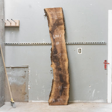 "84"" x 13"" Black Walnut Slab"