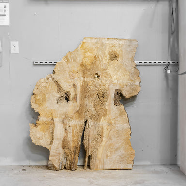 "54"" x 32"" Maple Burl Slab"