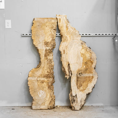 "54"" Maple Burl Slab Set 6"