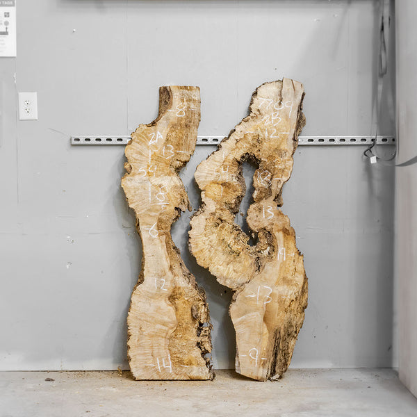 "54"" Maple Burl Slab Set 2"