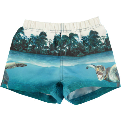 Molo Sea Turtle Boardies