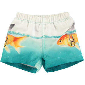 Molo Scary Fish Boardies
