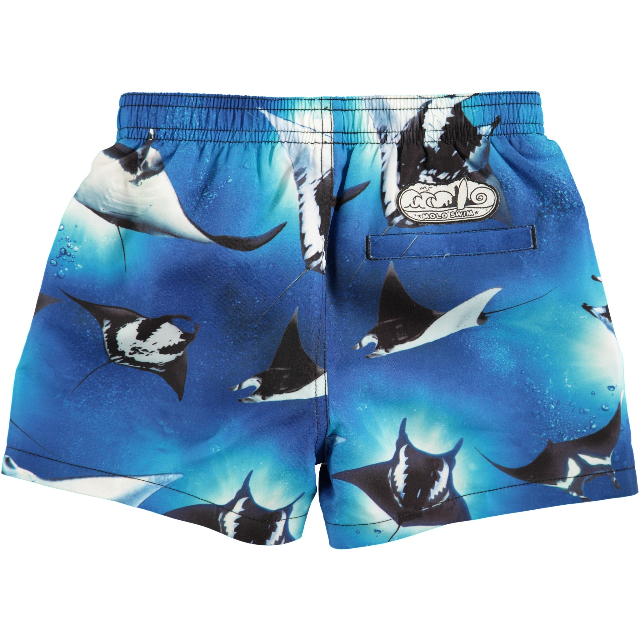 Molo Stingray Boardies