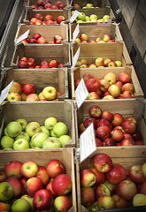 locally grown West Virginia apples at our farm market