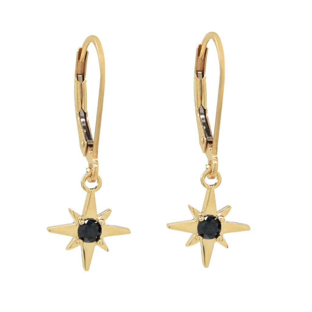 Leverback Black CZ Earrings