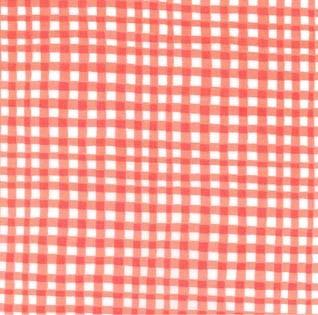 Gingham Play: Coral
