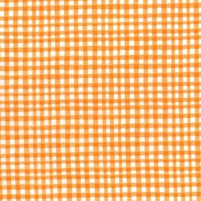 Gingham Play: Pumpkin