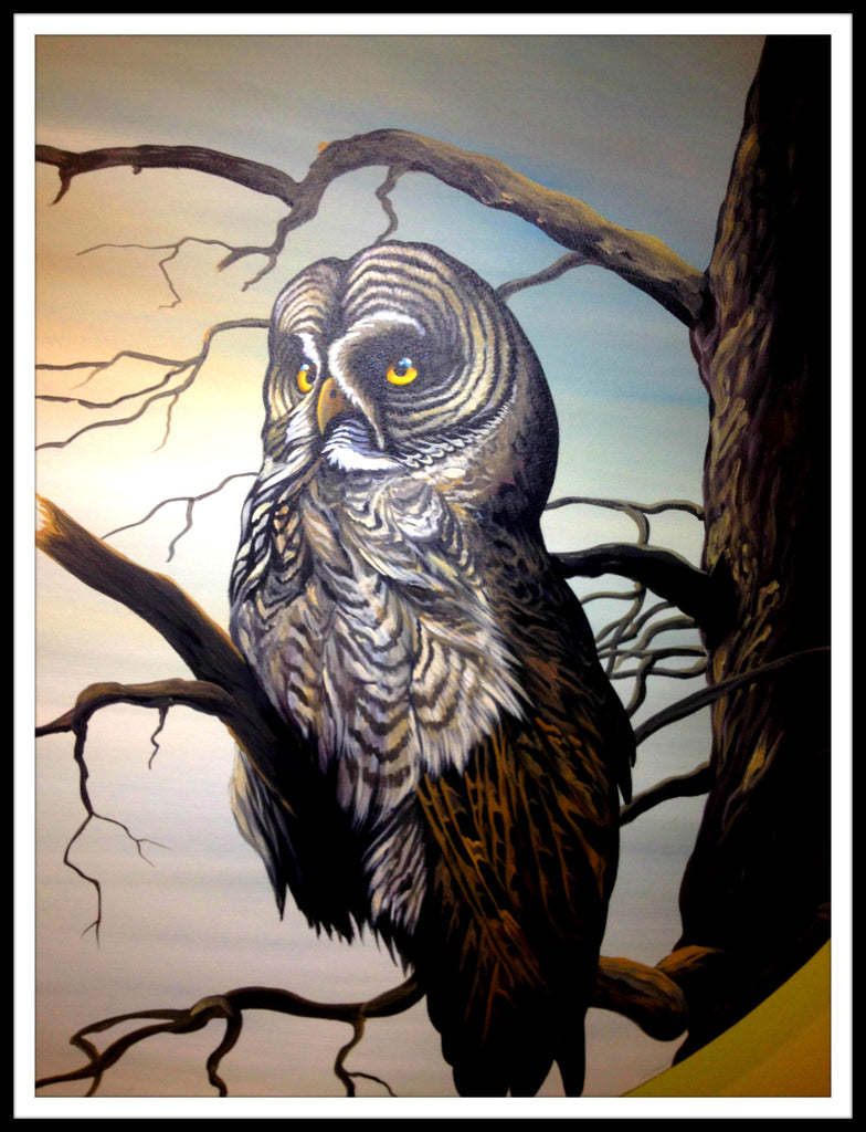 Jeff Monias Original: Grey Owl