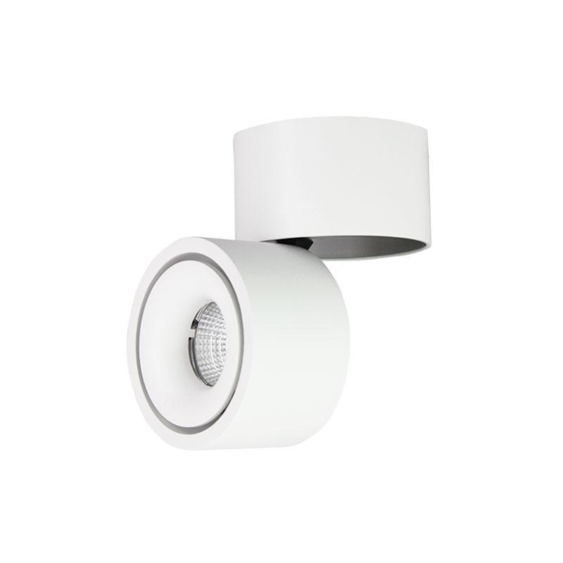 Prolux 9W LED Interior Wall/Ceiling Swivel Light -Dimmable -White Body