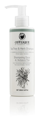 Tea Tree & Herb Shampoo