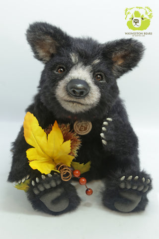 Artist Bear, Americano by Wayneston Bears