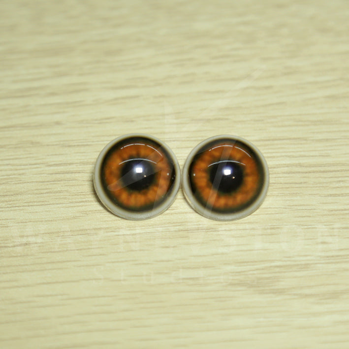 Realistic Resin Bear Eyes D1