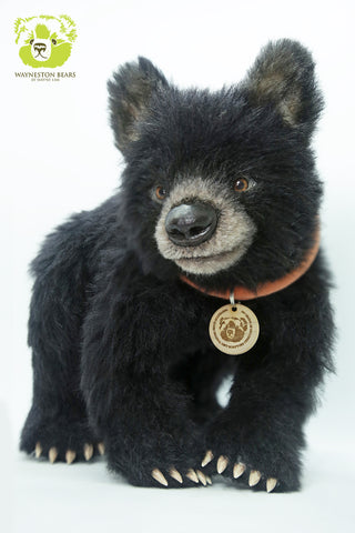 Artist Bear, Sirius by Wayneston Bears