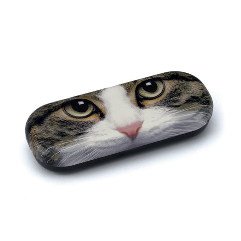 Tabby Cat Glasses Case