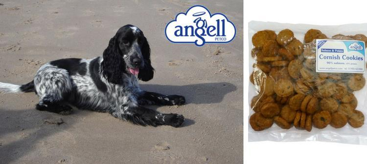Angell Petco - Fish for Dogs