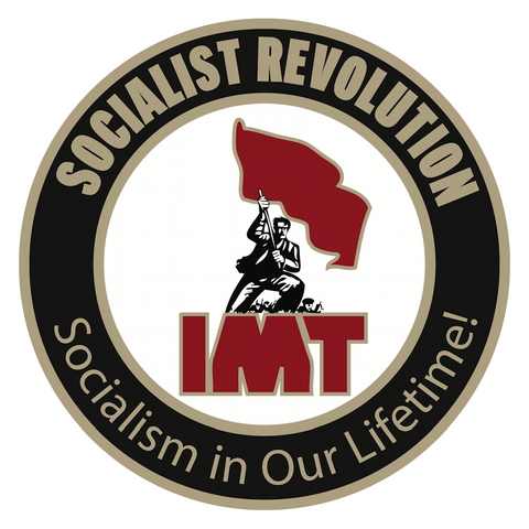 Socialist Revolution / IMT Pin: Flag Man