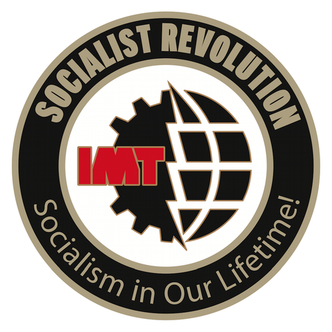 Socialist Revolution / IMT Pin: Gear and Globe