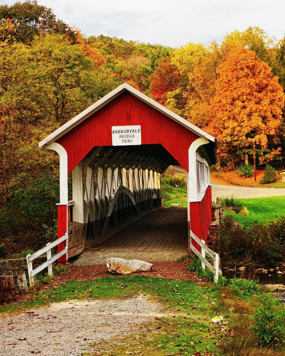 Ron Bruner's Barronvale Covered Bridge in the Fall - Somerset County Photo Note Cards - 6pkg