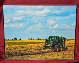 "Framed Photo of ""Making Hay"" Photographed by Carol Saylor"