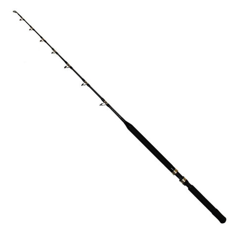 Shimano TLD A Stand-up Boat Rod