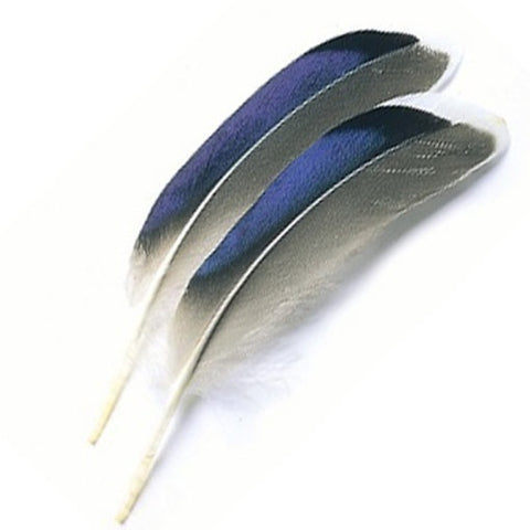 Turrall Wing Quills